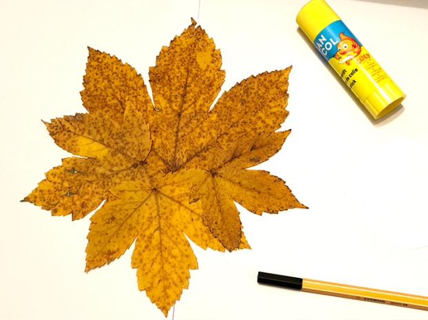 Herbstlöwe3