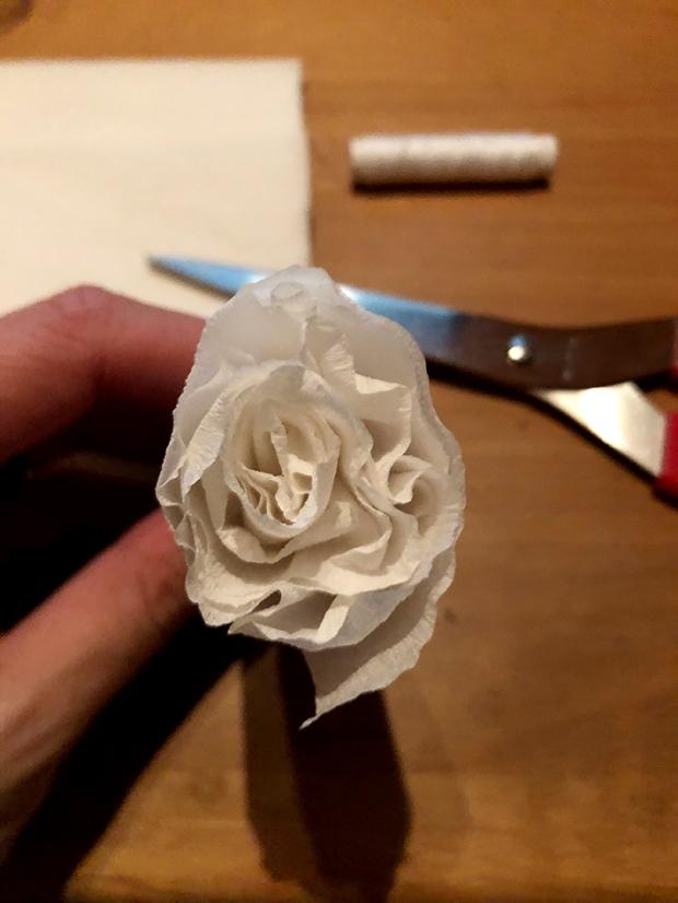 Krepp_Rose9