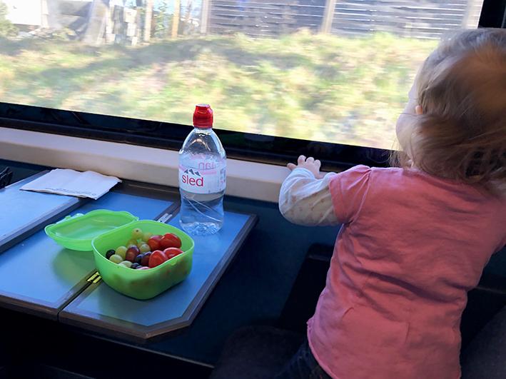 Zugfahren_mit_Kids11