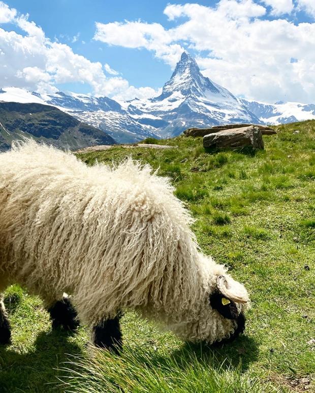 Wallis_Zermatt